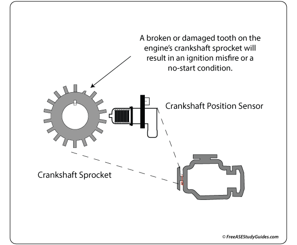 Crankshaft position sensor's circuit or a damaged reluctor ring could result in a no-start condition.