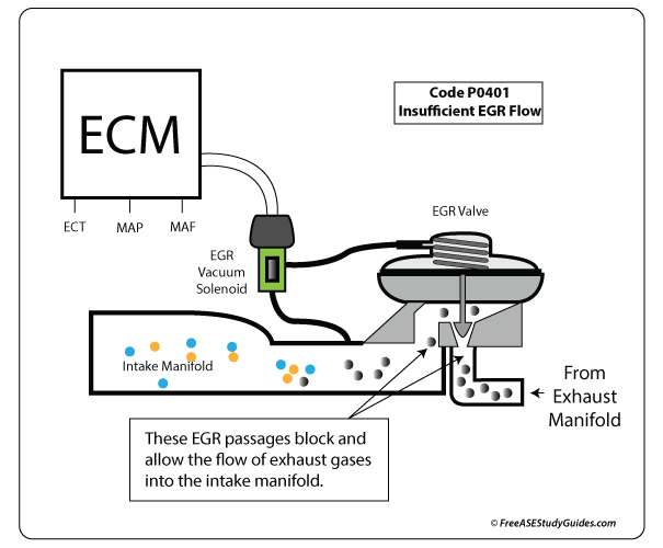 EGR Valve's Function and Cleaning